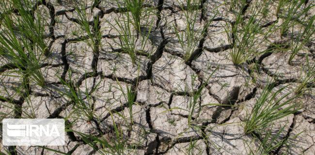 تنش آبی با شیرینسازی آب دریا قابل کنترل است
