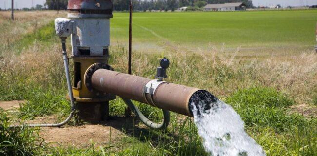 بهرهوری آب کشاورزی در استان سمنان از ۳۱ درصد افزایش یابد