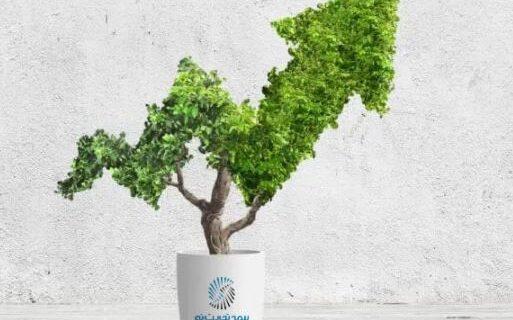 رتبه سوم حاشیه سود در بین شرکتهایی با چند دهه تجربه